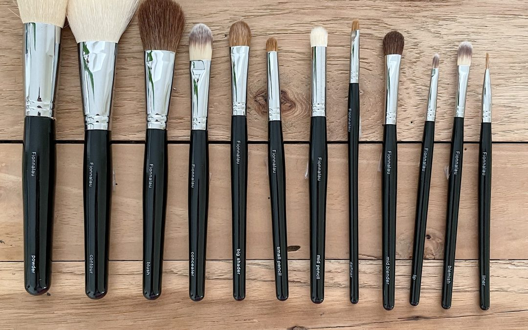 The Fabulous 12 Brushes